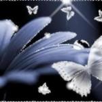 www.pokoloruj.swiatl-niebieski_kwiat_bialy_motyl.jpg