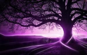 magia fioletu
