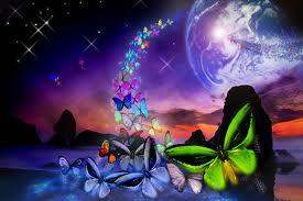 Przeźrocza motylich skrzydeł...