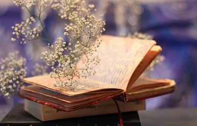 Poezja Jolanty Marii Dzienis Urodzinowy Wiersz