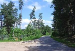 dom.gratka.pl